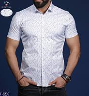Рубашка T-6230 (M, L, XL, XXL) — купить Мужская одежда оптом и в розницу в одессе 7км