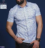 Рубашка T-6232 (M, L, XL, XXL) — купить Мужская одежда оптом и в розницу в одессе 7км