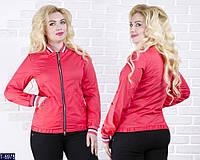 Ветровка T-6978 (48, 50) — купить Верхняя одежда XL+ оптом и в розницу в одессе 7км