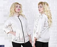 Ветровка T-6999 (46, 48, 50, 52, 54, 56) — купить Верхняя одежда XL+ оптом и в розницу в одессе 7км