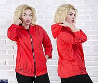 Ветровка T-7000 (46, 48, 50, 52, 54, 56) — купить Верхняя одежда XL+ оптом и в розницу в одессе 7км