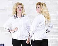 Ветровка T-7006 (50, 52, 54, 56, 58) — купить Верхняя одежда XL+ оптом и в розницу в одессе 7км