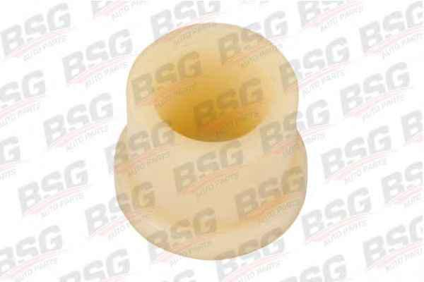 BSG 60-700-014 Втулка рессоры передняя (капроновая белая) MERCEDES 309/406/407/408/409/410/508/608/613
