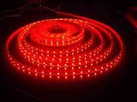 Светодиодная лента герметичная МТК-300R5050-12 красный