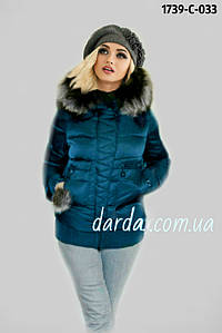 Куртка женская зимняя короткая Damader 1739 C