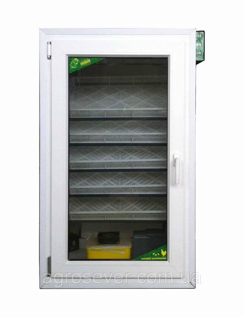 Инкубатор промышленный Тандем - 550 (на 550 куриных яиц)