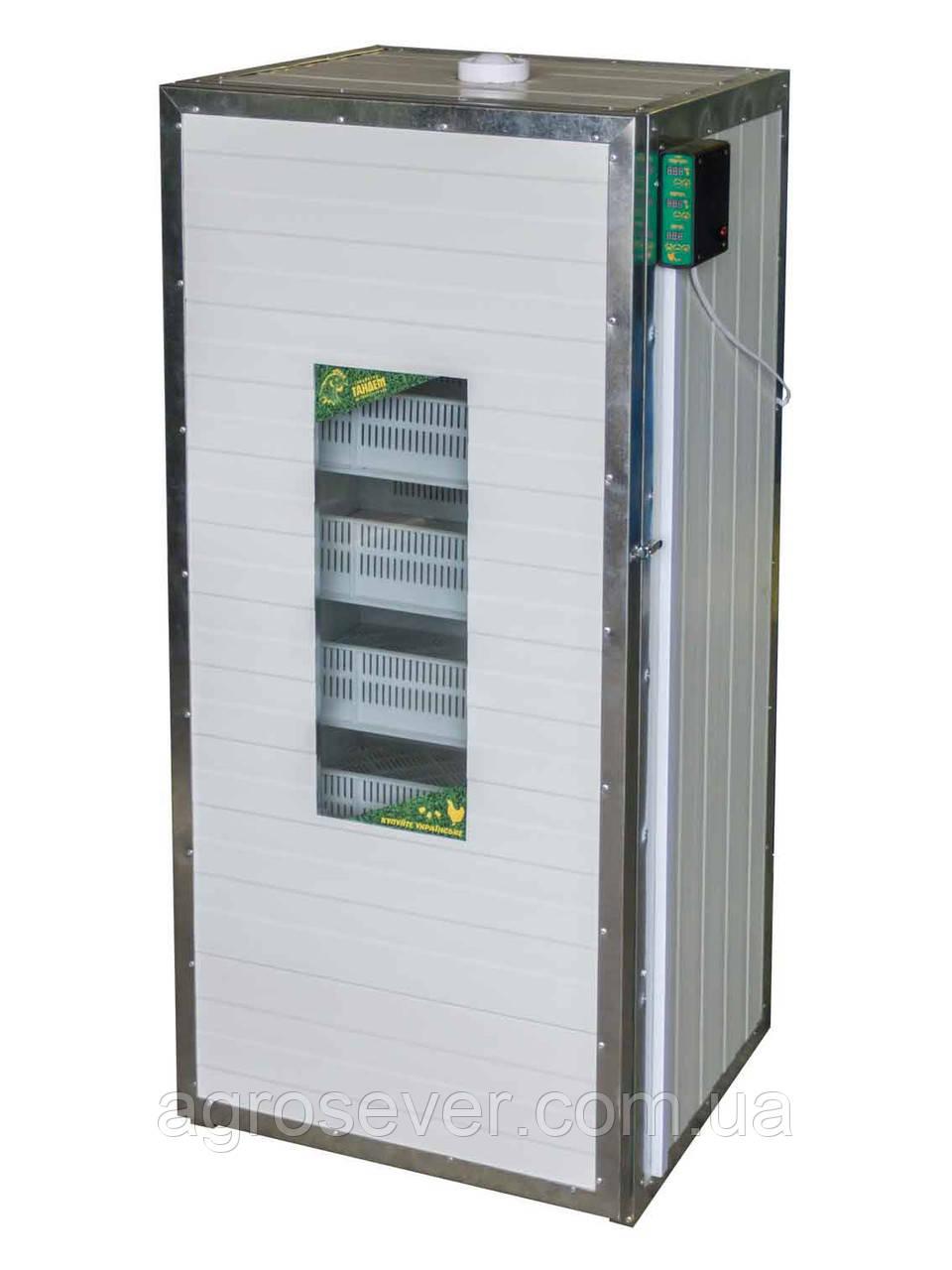 Инкубатор выводной Тандем - 550 (на 550 куриных яиц)