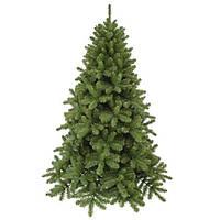 Сосна 3,65 м Scandia зеленая