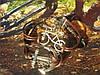Вело-браслет (шамбала) с Якорем и Велосипедом (коричневый)