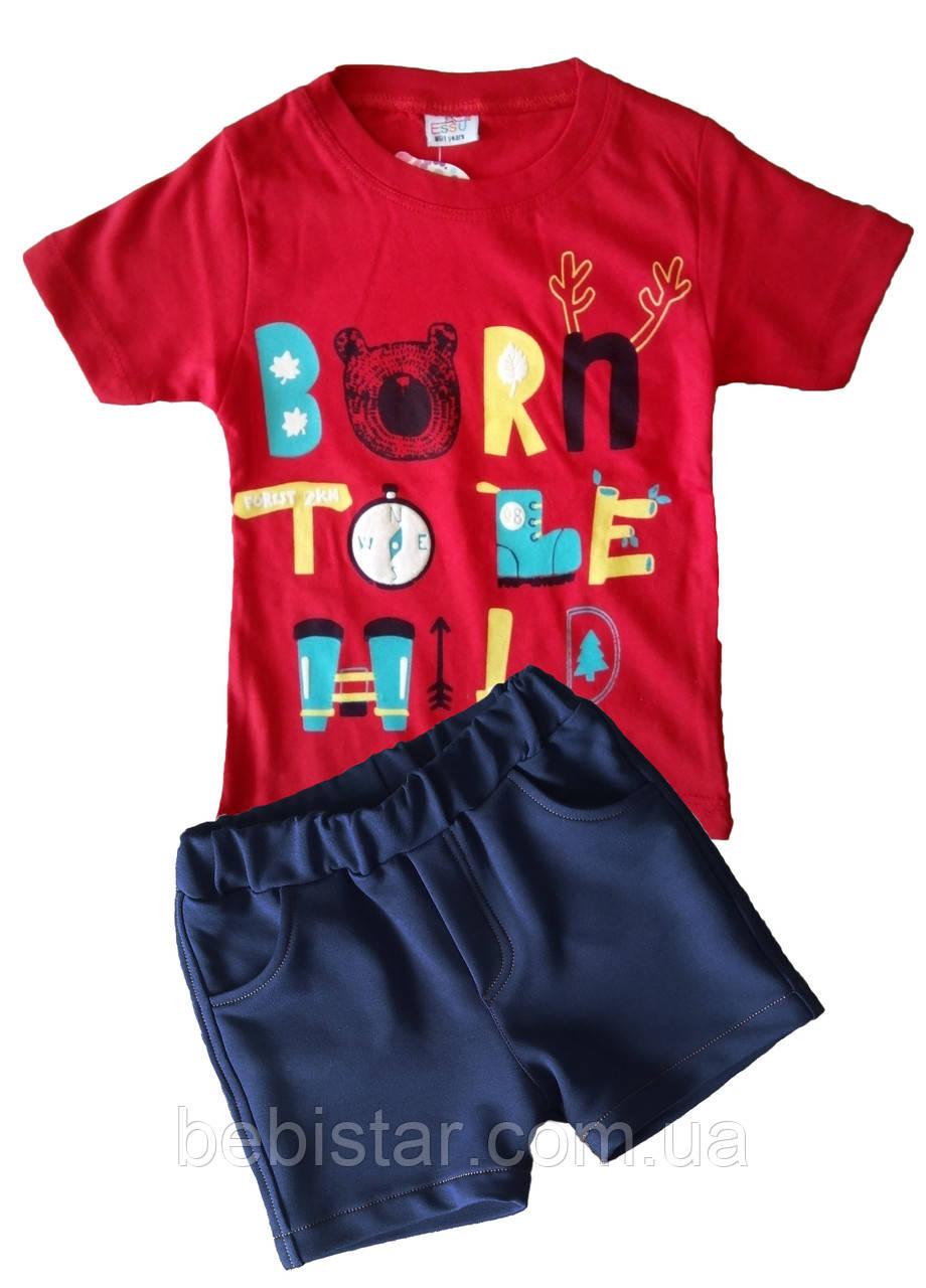 Футболка отважный исследователь и шорты темно-синие для мальчика 1-4 года