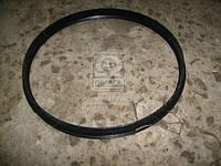 Кольцо замочное ЕВРО-2 (покупн. КамАЗ) 6520-3101026