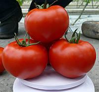 ПРАЙД F1 / PRAYD F1 — томат индетерминантный, Lark Seeds 250 семян