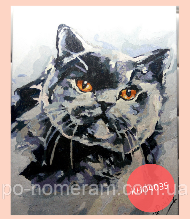 Картина Британская котейка, готовая работа