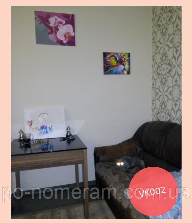 Радужный кот нарисованная картина по номерам