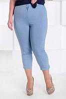Летние женские капри Джерри большой размер светлый джинс (52)