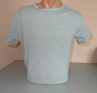 Мужская футболка Amylet 100% хлопок