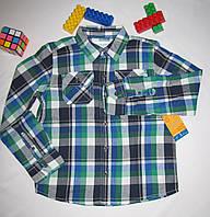 Рубашка Sonoma оригинал  рост 122 см синяя+зеленая 07055, фото 1