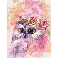 """Картины по номерам ТМ Идейка на подрамнике- Птицы """"Маленький совёнок"""" 30х40 см, без коробки"""