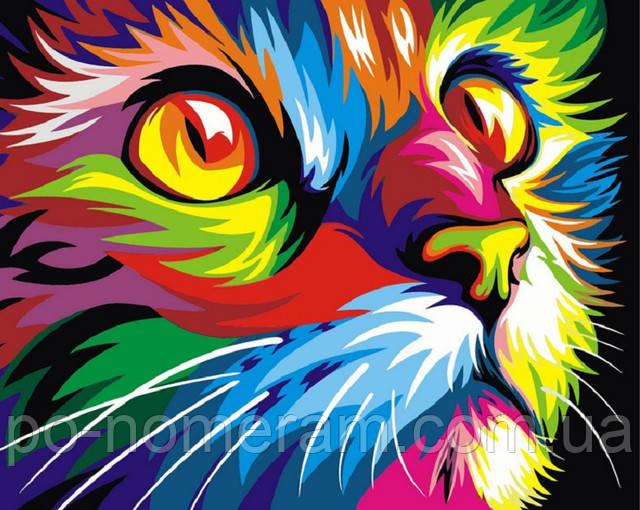 радужный кот картина по номерам