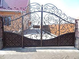 Ворота Володимирец, фото 2