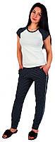 Футболка+штани 0053/111 Barwa garments, фото 1