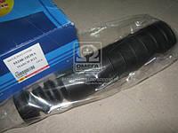 Пыльник амортизатора NISSAN MICRA задний (пр-во RBI)