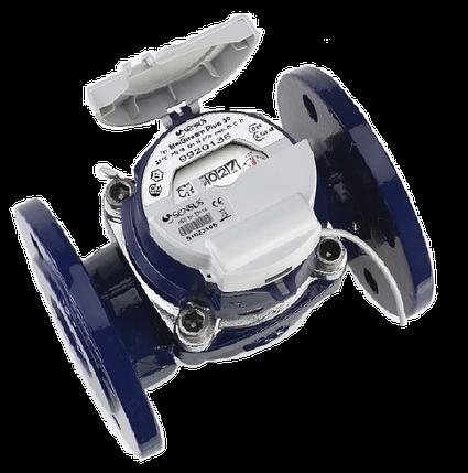 Турбинный счётчик воды WP-Dynamic Sensus 100 DN, фото 2