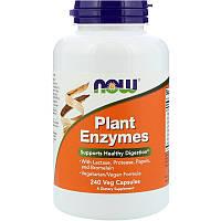 Now Foods, Растительные энзимы, 120 растительных капсул, фото 1