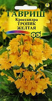 Кроссандра Тропик желтая