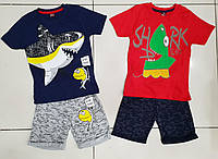 Костюмчик с шортами для мальчика 5-8 лет