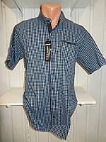 Рубашка мужская  CROM стрейч котон, полу-батал мелкая клетка 004 \ купить рубашку оптом.