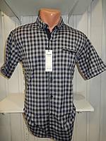 Рубашка мужская  CROM стрейч котон, полу-батал клетка 002 \ купить рубашку оптом.