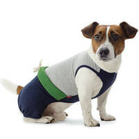 Pet Fashion костюм Фитнес S