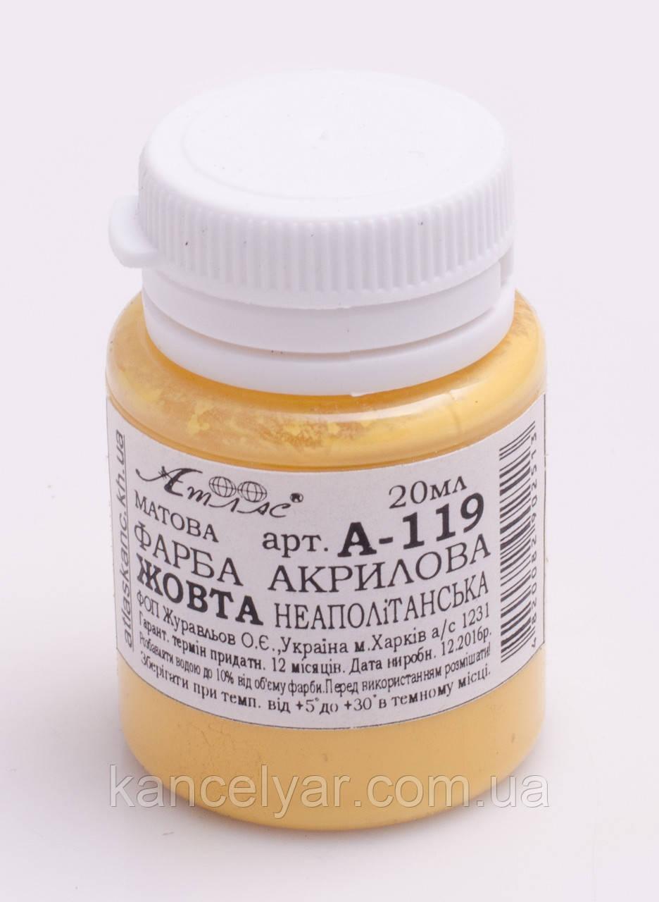 Фарба акрилова матова, 20 мл, жовтий неаполітанська