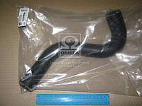 Патрубок радиатора верхний CHEVROLET LACETTI 1,6 Р96553267  DK.96553267