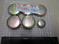 Заглушка блока цилиндров ВАЗ 2101 (компл. 5+1)  14329901/14328901
