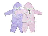 Костюм детский велюровый  двойка для девочки. Чип-Чипо 2516, фото 1
