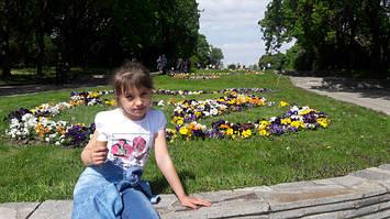 Прокіпець Ілона, 9р. м.Київ