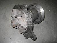 Насос водяной КАМАЗ евро-3 (со шкивом) (производство МЗВН) (арт. 740.63-1307010), AFHZX