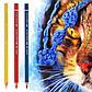 Олівець акварельний кольоровий Faber-Castell A. Дюрера синювато-бірюзовий ( Bluish Turquoise ) № 149, 117649, фото 9