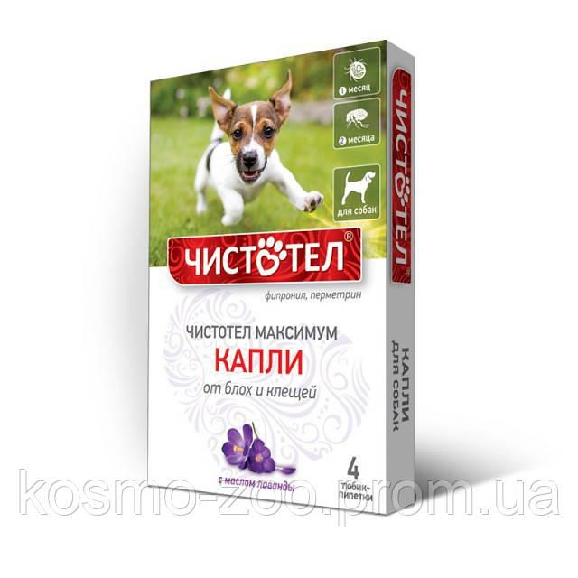 Капли Чистотел Макси с лавандой от блох и клещей для собак, 4 пипетки в упаковке