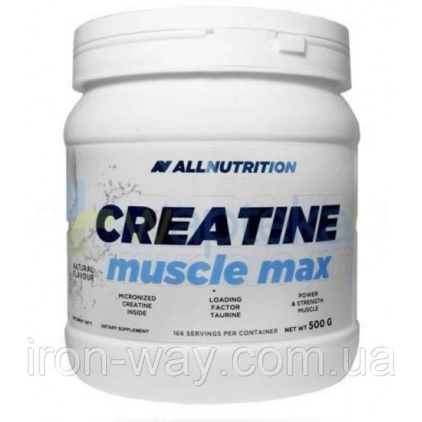 All Nutrition Creatine Muscle Max 500 g