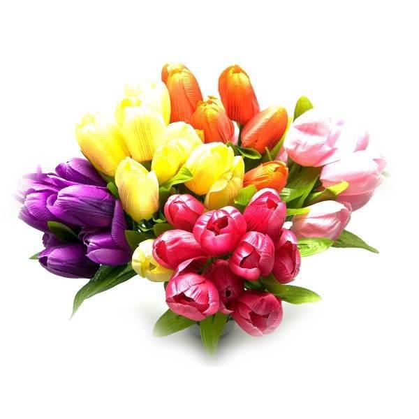 Купить букет из 17 тюльпанов киев, доставка цветов в севастополь отзывы