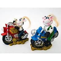 Корова на мотоцикле (4шт/уп) , Распродажа