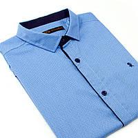 Рубашка мужская с коротким рукавом STEFANO RICCI, фото 1