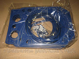 Ремкомплект двигателя ЕВРО (4 наименования) (прокладка ГБЦ армированная) (синий)  (арт. 740.1003209-01), ACHZX