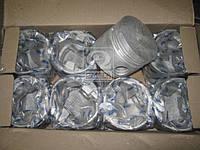Поршень цилиндра ГАЗ,БТР двигатель ЗМЗ-41  (СТ) D=100,0 мм (8 шт.)  производство Украина (арт. 41-1004015), AHHZX