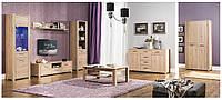 """Польская  мебель для гостинной  """"Nicol"""""""