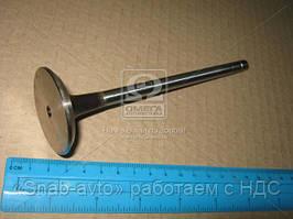 Клапан EX R.V.I. MIDR 06.23.56 (производство AE) (арт. V91346), ABHZX