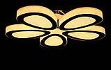 Люстры потолочные светодиодные  Splendid-Ray 30-3441-38, фото 2